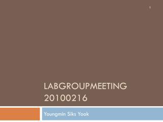 Labgroupmeeting 20100216