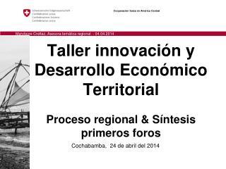 Taller innovación y Desarrollo Económico Territorial Proceso regional & Síntesis primeros foros