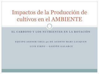 Impactos de la Producción de cultivos en el AMBIENTE