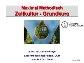 Maximal Methodisch Zellkultur - Grundkurs