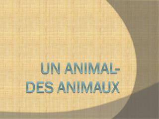 Un Animal-  des  animaux