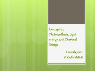 Concept 6.5  Photosynthesis, Light energy, and Chemical Energy