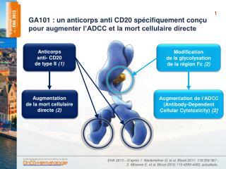 Anticorps anti- CD20 de type II  (1)
