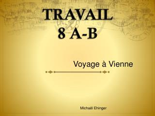 TRAVAIL  8 A-B