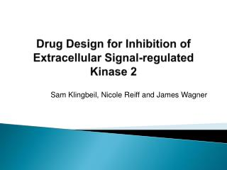 Drug Design for Inhibition of Extracellular Signal-regulated Kinase 2
