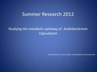 Summer Research 2012 Studying the metabolic pathway of   Acidobacterium Capsulatum