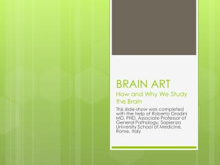 BRAIN ART How and Why We Study the Brain