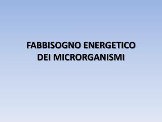 FABBISOGNO ENERGETICO  DEI MICRORGANISMI