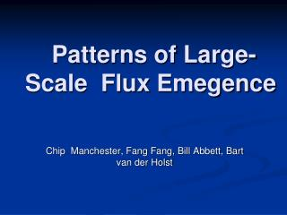 Patterns of Large-Scale  Flux  Emegence
