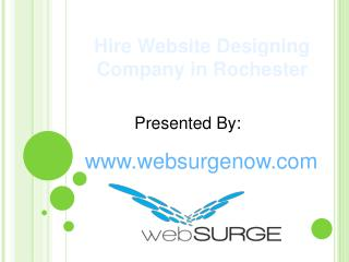 Hire Website Designing Company in Rochester
