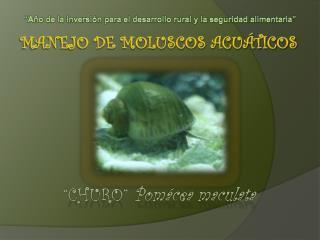 Manejo de moluscos acuáticos