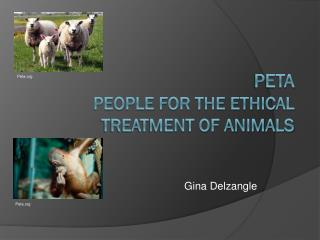PETA People for the Ethical Treatment of Animals