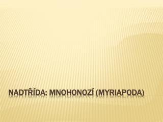 Nadtřída: Mnohonozí ( Myriapoda )