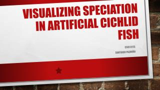 Visualizing Speciation in Artificial Cichlid Fish