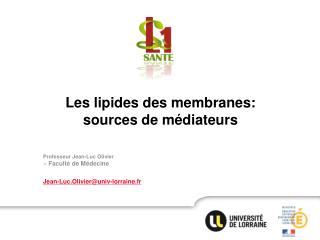 Professeur Jean-Luc Olivier > Faculté de Médecine Jean-Luc.Olivier@univ-lorraine.fr