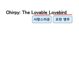 Chirpy: The Lovable Lovebird