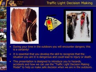 Traffic Light Decision Making