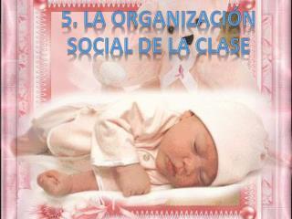 5. La organización social de la clase
