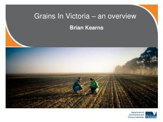 Grains In Victoria �  an overview