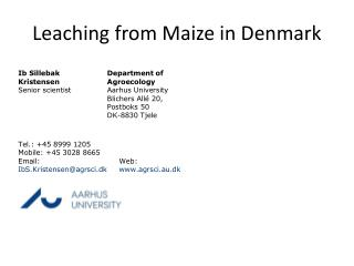 Leaching from Maize in Denmark