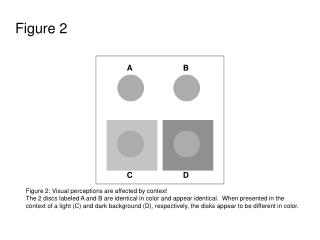 Figure 2 Figure 2: Visual perceptions are affected by context