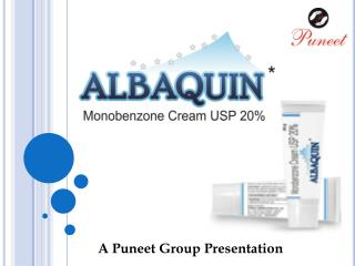 A  Puneet  Group Presentation