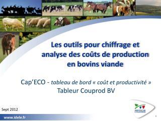 Les outils pour chiffrage et analyse des coûts de production  en bovins viande