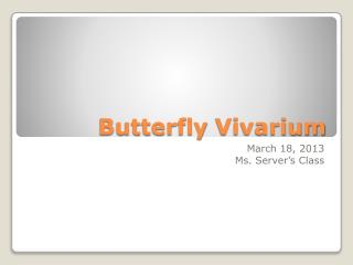 Butterfly  Vivarium