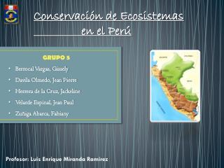 Conservación de Ecosistemas                                 en el Perú