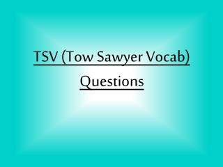 TSV (Tow Sawyer Vocab) Questions