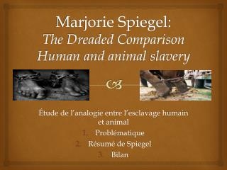 Marjorie Spiegel:  The  Dreaded Comparison Human  and animal  slavery