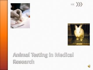 Animal Testing in Medical Research
