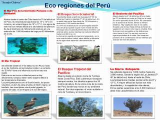 Eco regiones del Perú