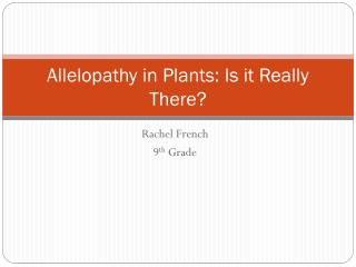 Allelopathy in Plants: Is it Really There?