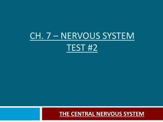 CH. 7 – NERVOUS SYSTEM TEST #2