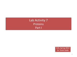 Lab Activity 7 Proteins  Part I