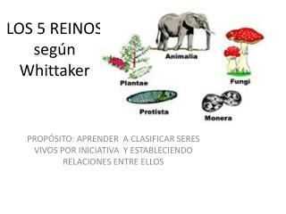 LOS 5 REINOS según  W hittaker