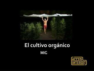 El  cultivo orgánico