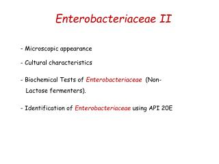 Enterobacteriaceae  II