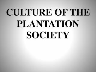 CULTURE OF THE PLANTATION SOCIETY