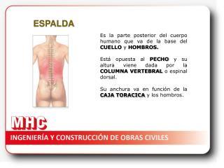 La hernia intervertebral elektroforez