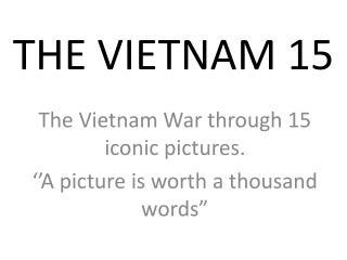 THE VIETNAM 15