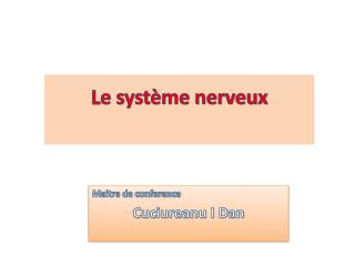 L e syst�me nerveux
