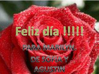 Feliz día !!!!!