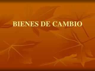 BIENES DE CAMBIO