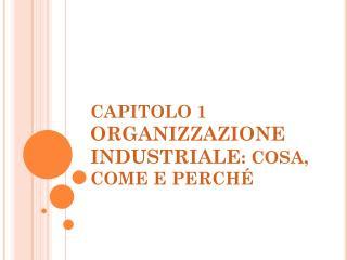 CAPITOLO 1 ORGANIZZAZIONE INDUSTRIALE : COSA, COME E PERCH�