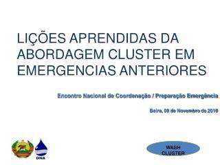 LIÇÕES  APRENDIDAS DA ABORDAGEM CLUSTER EM   EMERGENCIAS ANTERIORES
