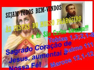 SEJAM TODOS BEM-VINDOS ÀS FESTAS DO NOSSO PADROEIRO e de São Carlos  Lwanga !!!