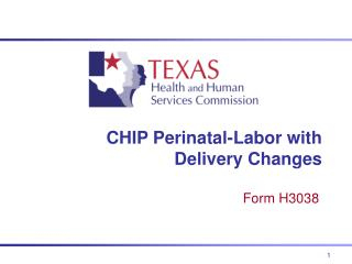 CHIP Perinatal-Labor with Delivery Changes
