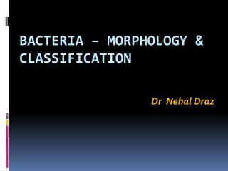 Bacteria – Morphology & Classification